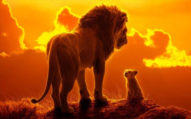 le roi lion lionceau